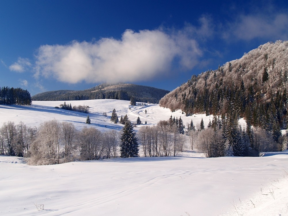 Отдых в Словакии